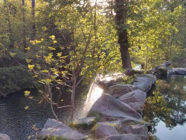 Cascade - bois de Vincennes